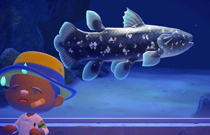 Coelacanth In Animal Crossing