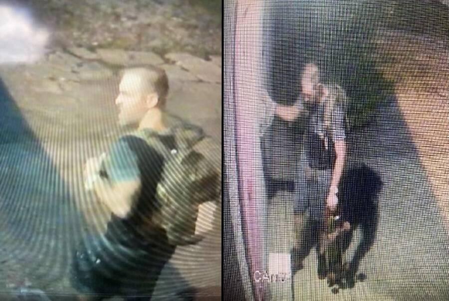 Florida Man Stealing Cat Blood