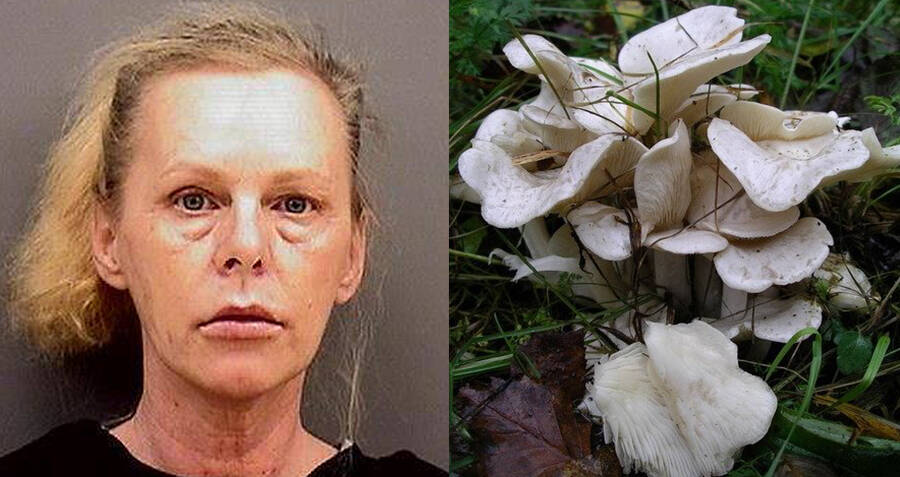 Indiana Woman's Search History Reveals She Murdered Her Husband With A Poisonous Mushroom