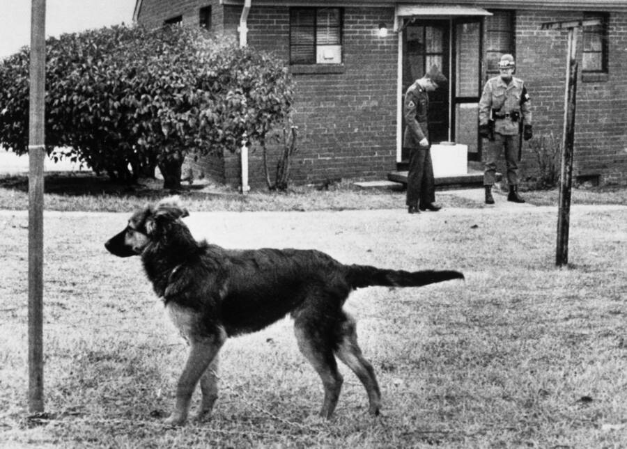 Military Police And Dog Outside Jeffrey Macdonald Home