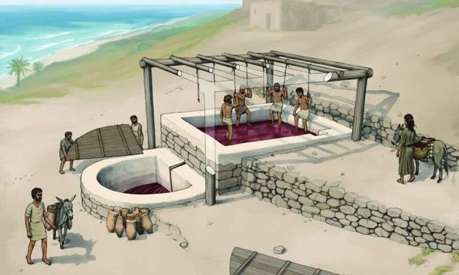 Reconstruction Of Phoenician Wine Press