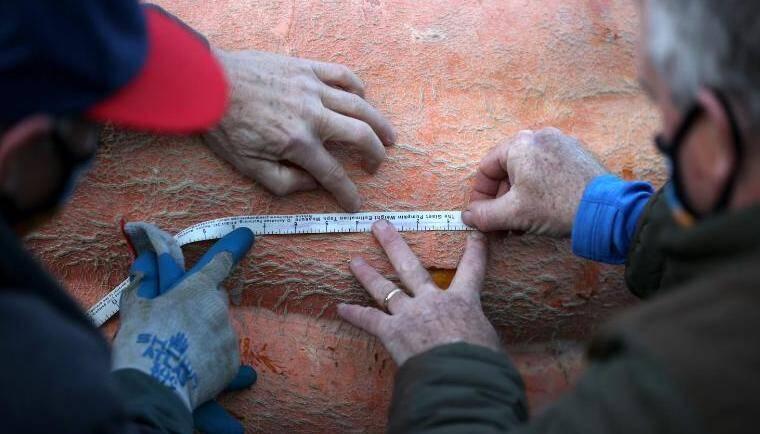 Men Measure Gigantic Pumpkin