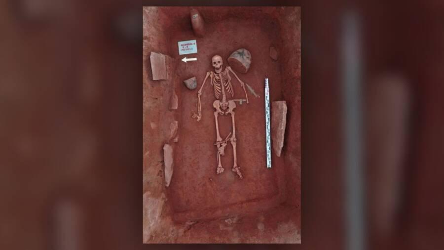 Scythian Tagarian Warrior