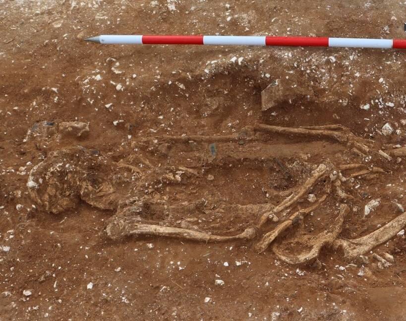 Skeleton Of Marlow Warlord