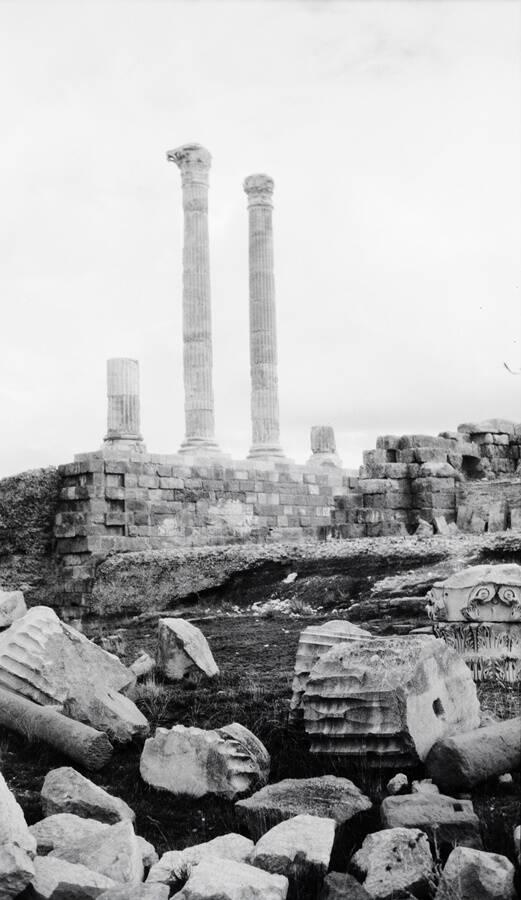 Timgad Ruins