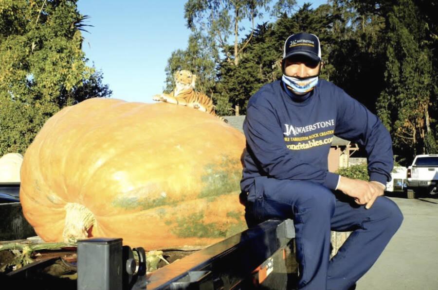 Travis Gienger With Pumpkin On Trailer