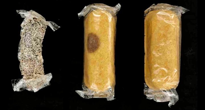 Scientists Are Baffled By The Unknown Fungus That Mummified This Eight-Year-Old Twinkie