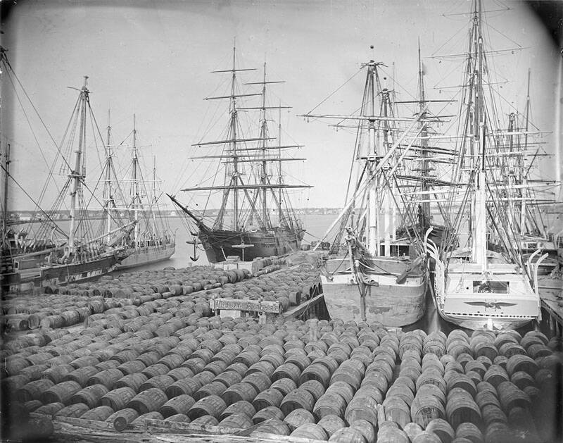 Whaling Ships Docked In A Harbor