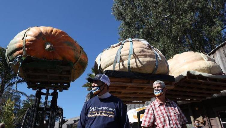 Winners Of Pumpkin Contest