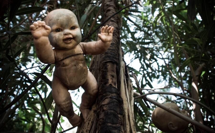 Baby Doll On La Isla De Las Muñecas