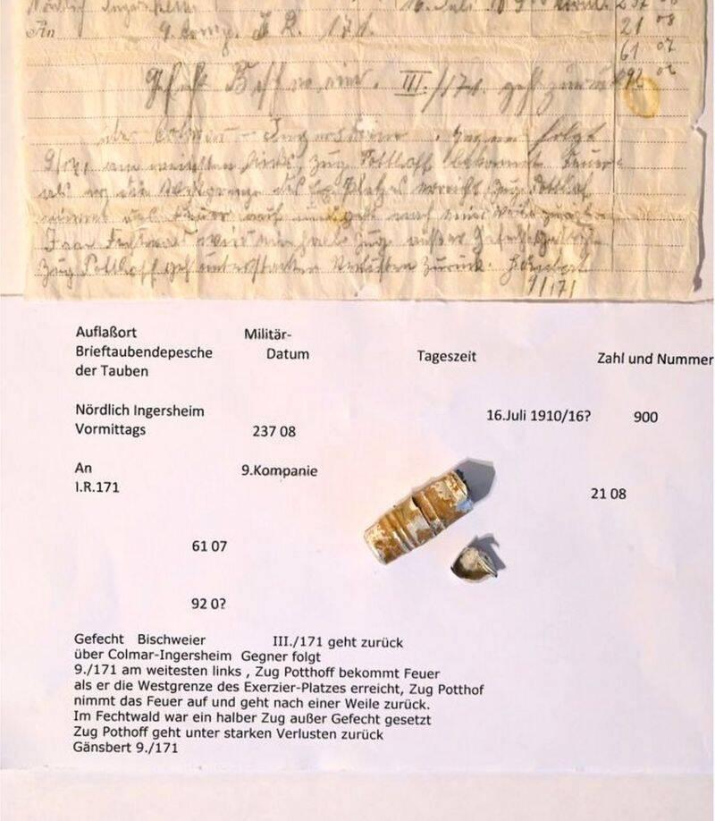Translation Of Linge War Letter