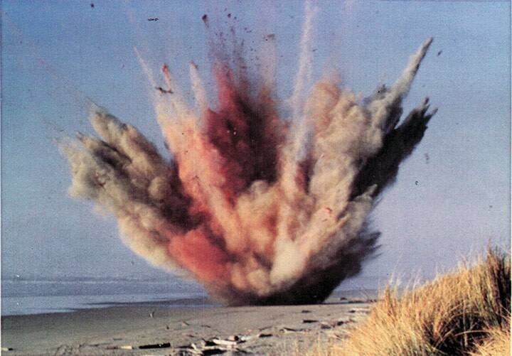 Whale Explodes On The Beach