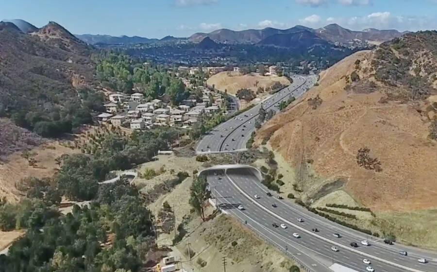 California Wildlife Corridor