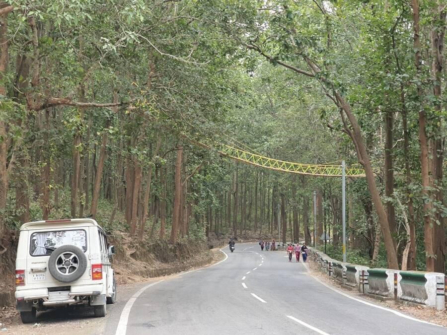 Indias Eco Bridge
