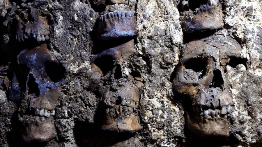 Rack Of Aztec Skulls