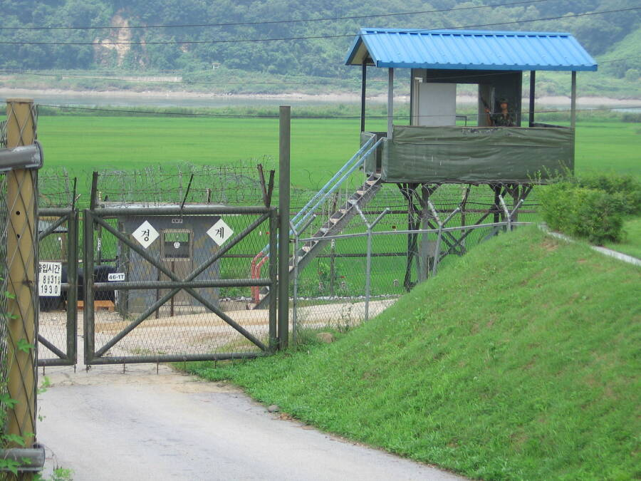 South Korean Dmz Sentry