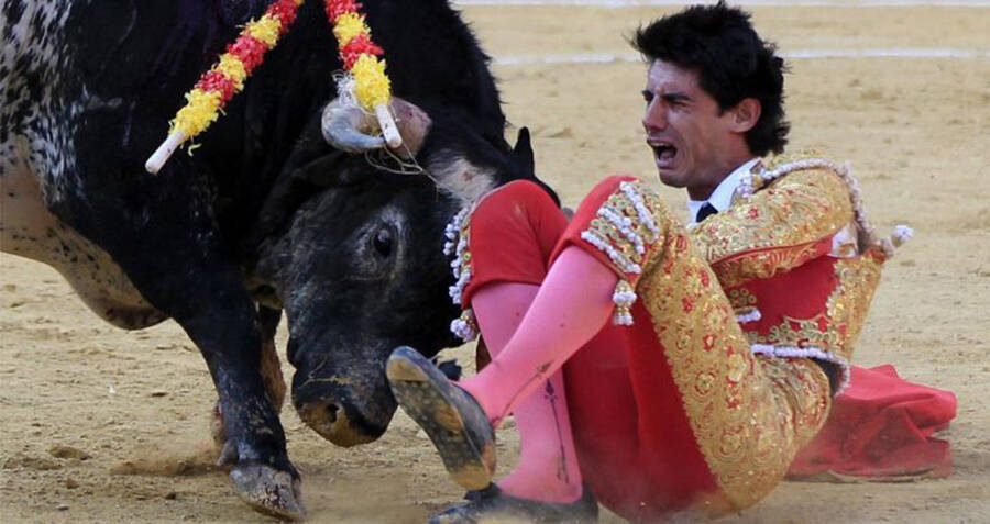 He Was A Champion Bullfighter — Then He Was Gored To Death On Live TV
