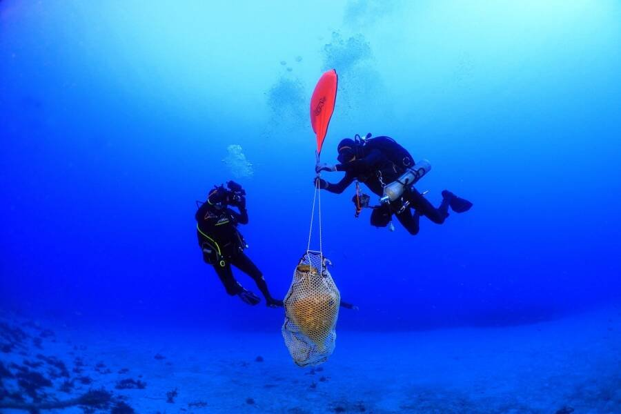 Divers Finding Pottery