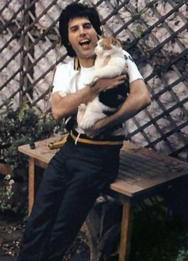 Freddie Mercury And Delilah