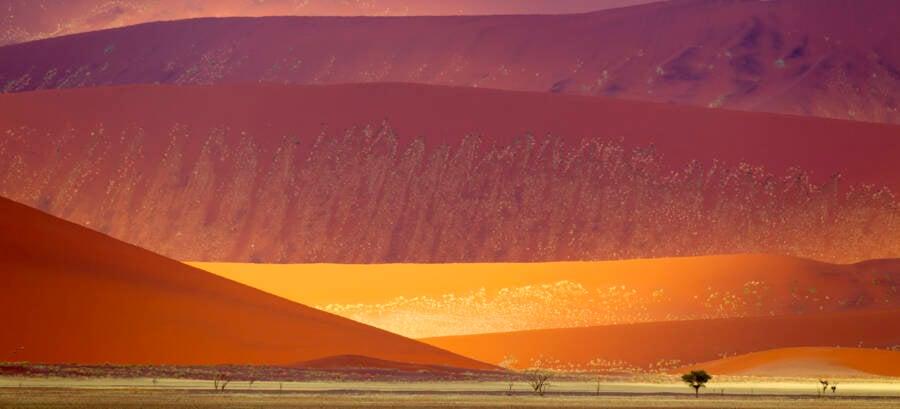 Namib Naukluft Sand Dunes