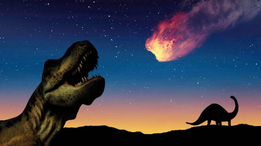 Dinosaurs And Asteroid Illustration