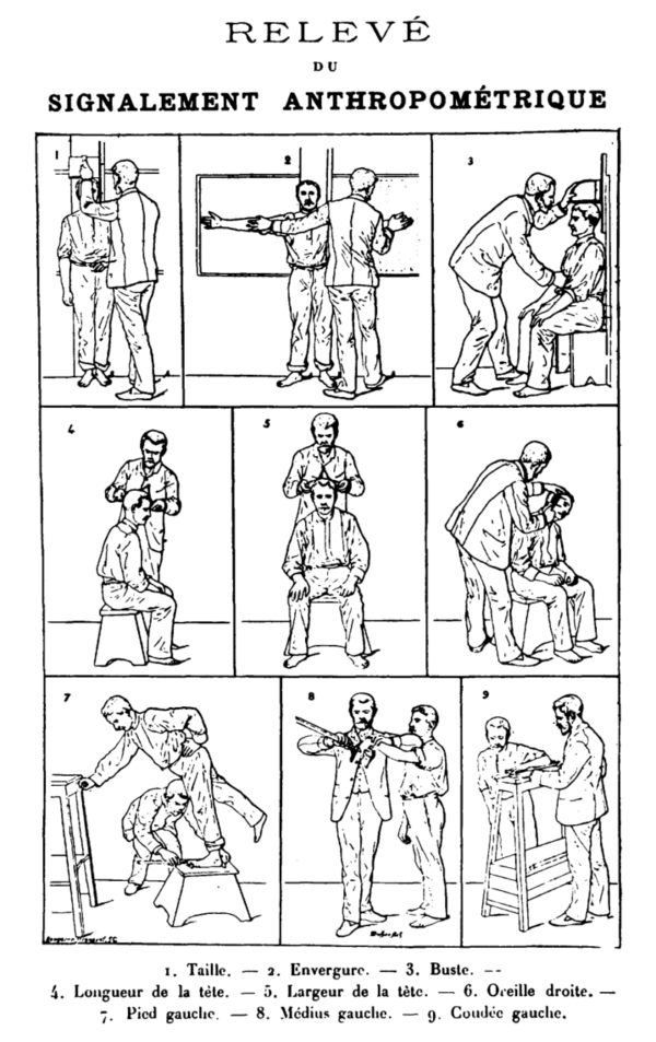 Chart For Measuring Suspects