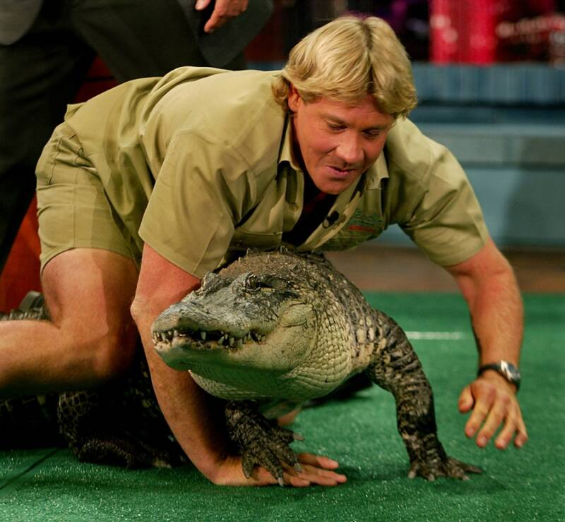 Steve Irwin With A Crocodile