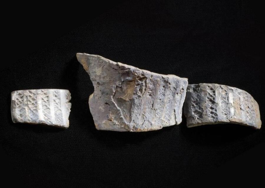 Viking Artifact Pieces