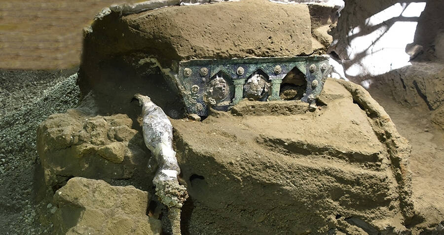 Luxurious Chariot Discovered Almost Perfectly Preserved In Volcanic Ash Near Pompeii