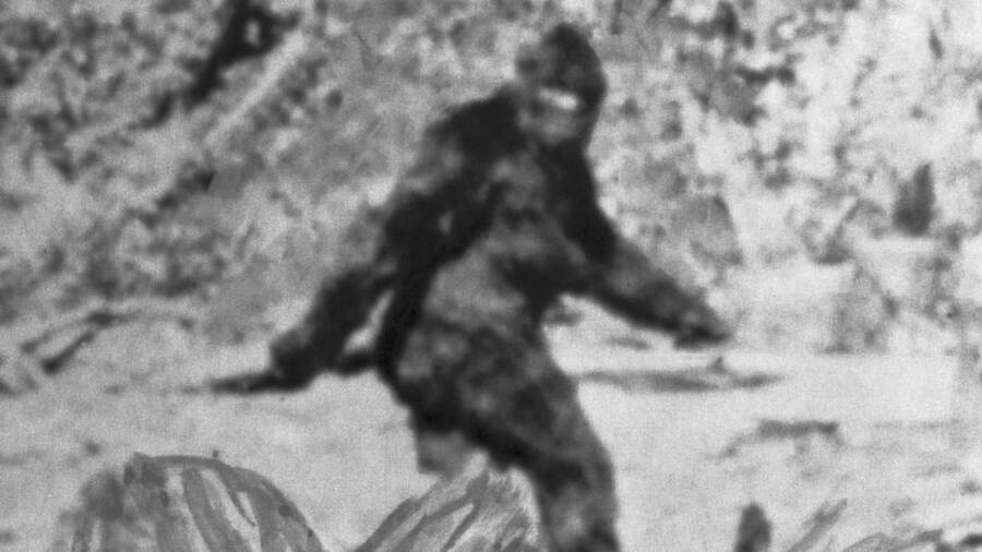 Shot From Patterson-Gimlin Film