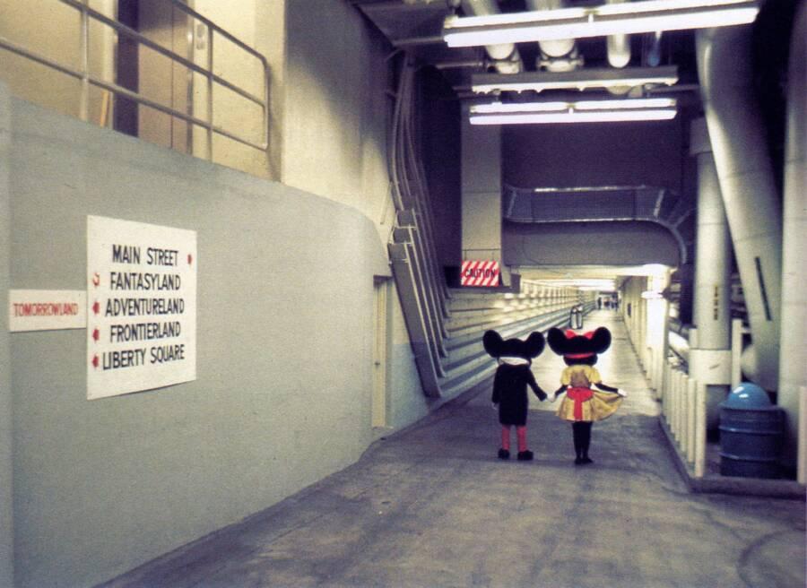 Cast Members In Disney Underground Tunnels