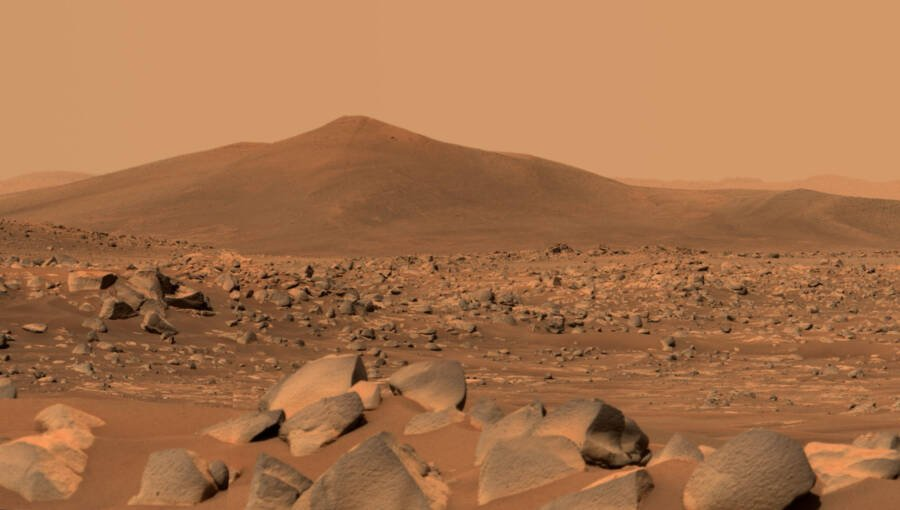 Is There Life On Mars