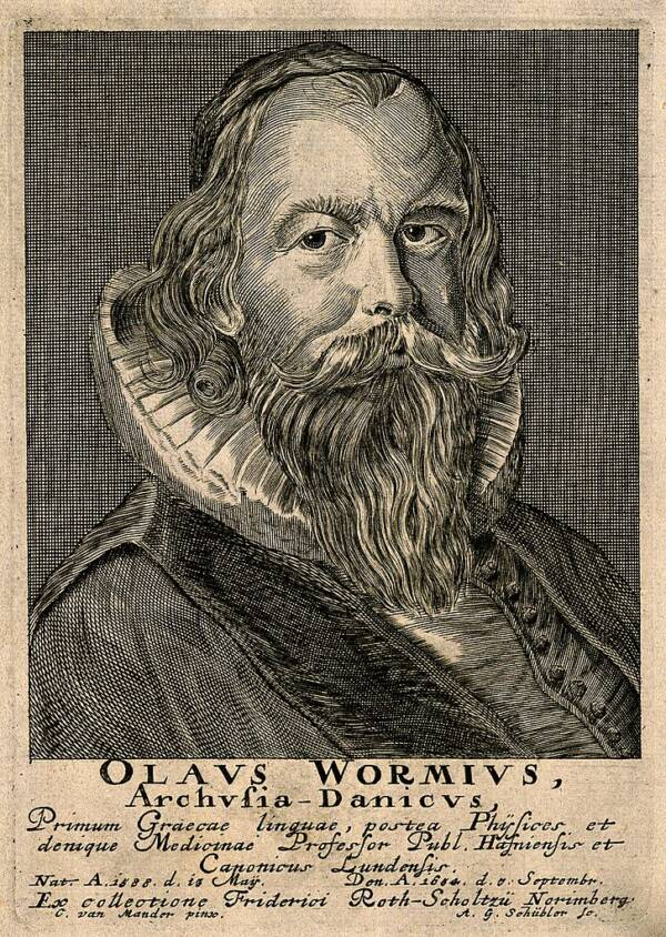 Ole Worm Engraving