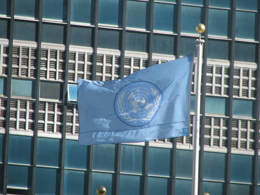 United Nations Flag And Building