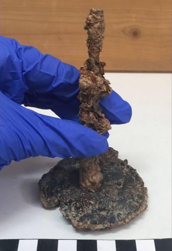 Athenian Curse Jar Nail