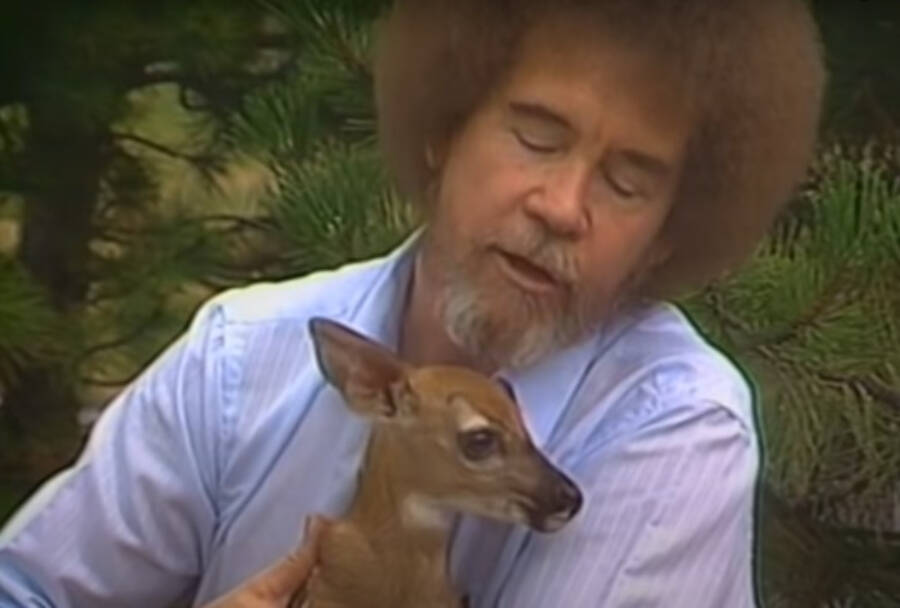 Bob Ross With Deer