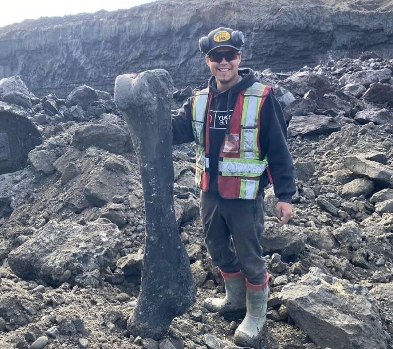 Miners Find Woolly Mammoth Bones