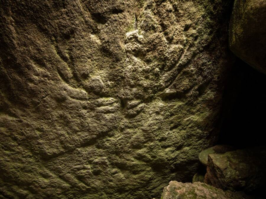 Prehistoric Animal Carvings