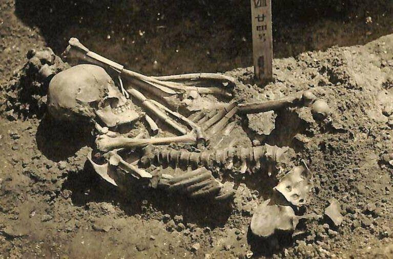 Skeleton Of Oldest Shark Attack Victim