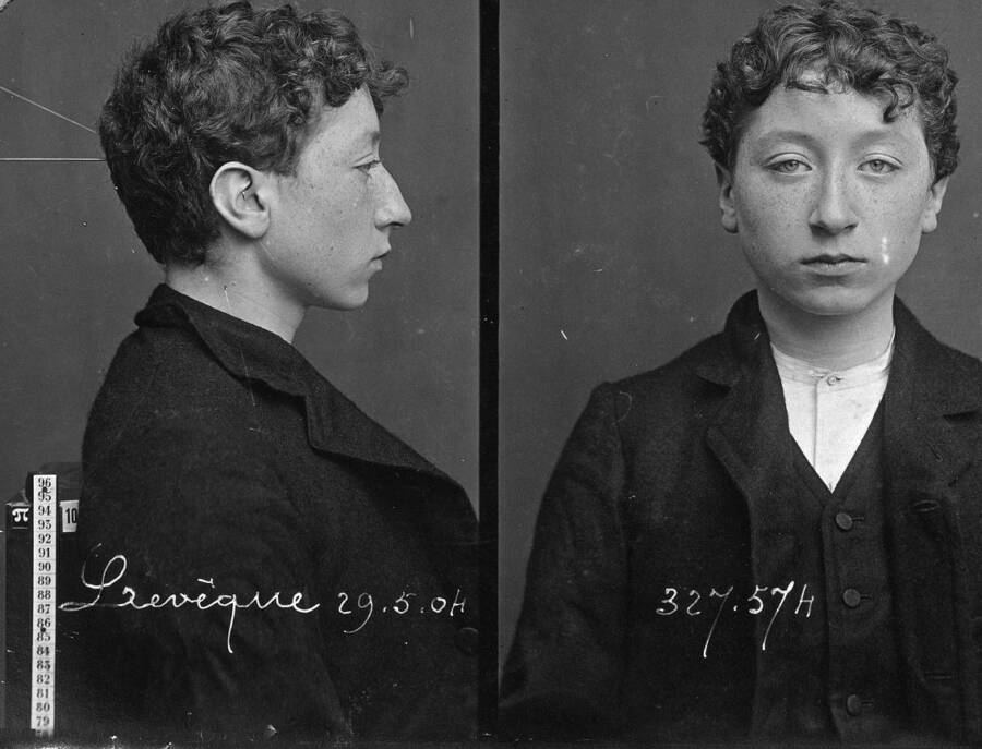 Alphonse Bertillon Mug Shot Of Young Person