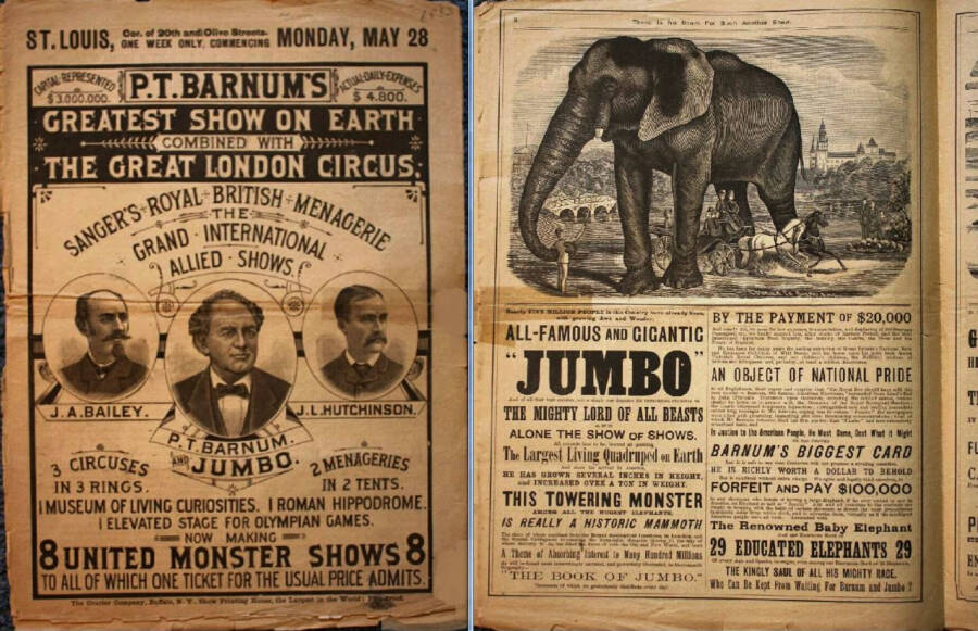 Circus Flyer For The Greatest Show on Earth