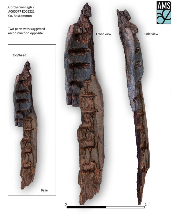 Detalhes do ídolo de Gortnacrannagh