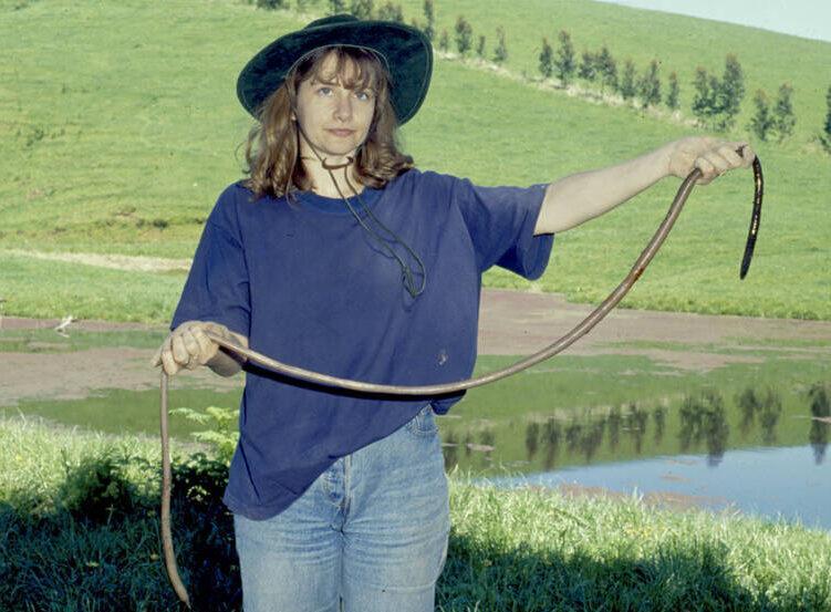 Giant Earthworm