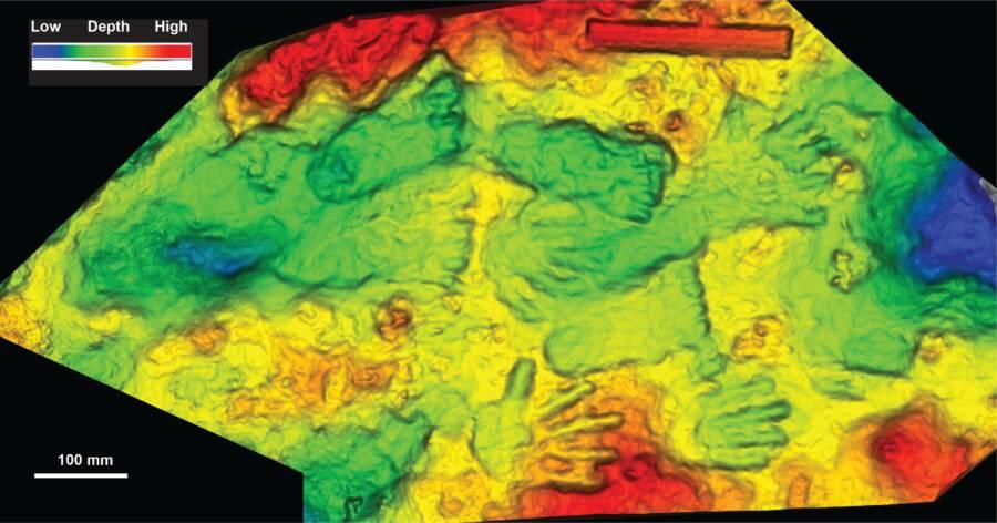 3D Model Of Handprints