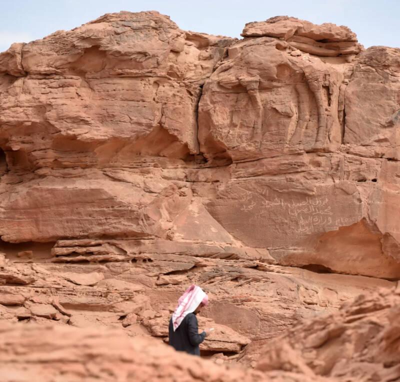 Ancient Camel Reliefs
