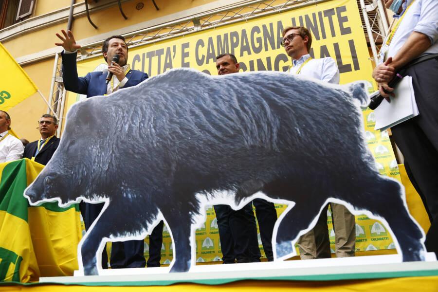Demonstration Against Wild Boar Invasion