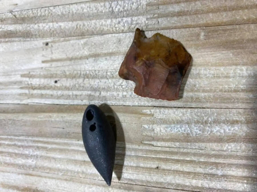 Prehistoric Hunting Tools From Alligator Stomach