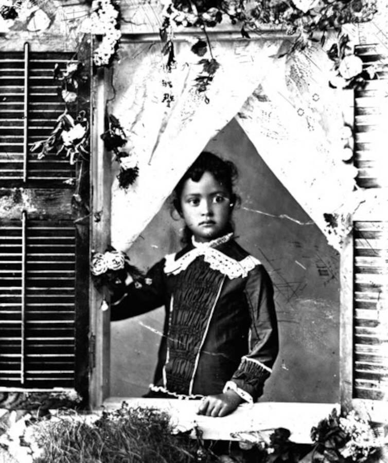 Kaiulani At Window